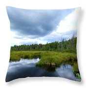 Maine Pond Throw Pillow