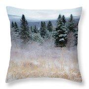 Maine Woods Throw Pillow