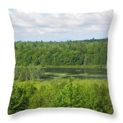 Mainely Green Throw Pillow