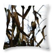 Maize Throw Pillow