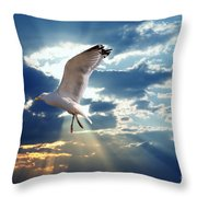 Majestic Bird Against Sunset Sky Throw Pillow