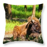 Majestic Bison Throw Pillow
