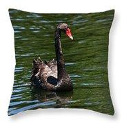 Majestic Black Swan Throw Pillow