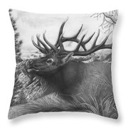 Majestic Bull Elk Throw Pillow