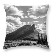 Majestic Drive Throw Pillow
