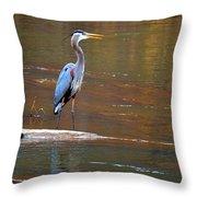 Majestic Heron Throw Pillow