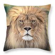 Majestic King Throw Pillow by Everet Regal