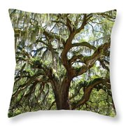Majestic Oak 3 Throw Pillow