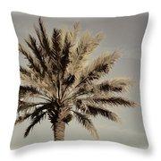 Majestic Palm Throw Pillow