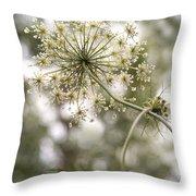 Majestic Queen -  Queen Anne's Lace Daucus Carota Throw Pillow