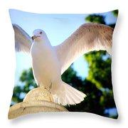 Majestic Seagull II Throw Pillow