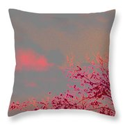 Majestic Skies Throw Pillow