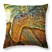 Majestic Tortoise Throw Pillow