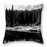 Majestic View 2bw Throw Pillow