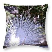 Majestic White Peafowl Throw Pillow