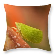 Making Like A Leaf Throw Pillow