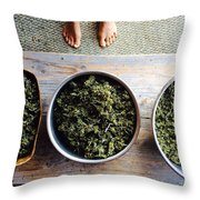 Making Medicine  Throw Pillow