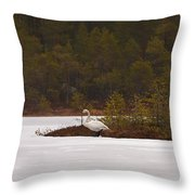 Making Reservations Throw Pillow