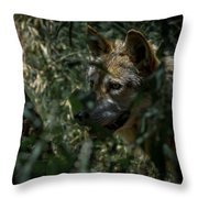 Making Rounds Throw Pillow