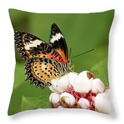Malay Lacewing Throw Pillow