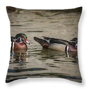 Male Adult Wood Ducks Throw Pillow