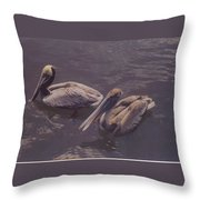 Male And Female Pelicans Throw Pillow