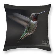 Male Anna Hummingbird In Flight Throw Pillow