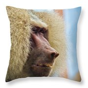 Male Baboon Throw Pillow