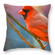 Male Cardinal  - Colorful Perch - Digital Paint Throw Pillow