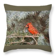 Male Cardinal In Spruce Tree Throw Pillow