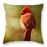 Male Cardinal In The Sun - Digital Paint Throw Pillow