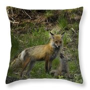 Male Fox And Pup   #3554 Throw Pillow