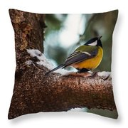 Male Great Tit Throw Pillow