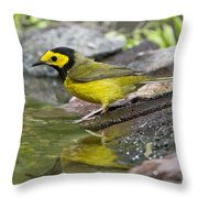 Male Hooded Warbler Throw Pillow