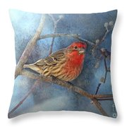 Male House Finch With Blue Texture Throw Pillow
