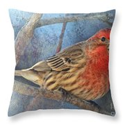 Male Housefinch Close View Throw Pillow