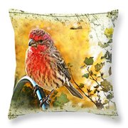 Male Housefinch Photoart Throw Pillow