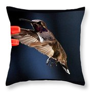 Male Hummingbird Anna's Coming In Too Low Throw Pillow