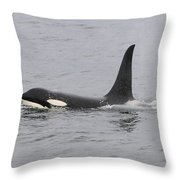 Male Killer Whale Throw Pillow