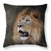 Male Lion II Throw Pillow