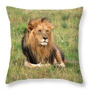 Male Lion On The Masai Mara Throw Pillow by Aidan Moran