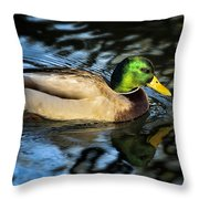 Male Mallard Throw Pillow