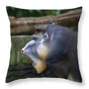 Male Mandrill Portrait Throw Pillow