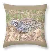 Male Montezuma Quail 5-6-14 Throw Pillow