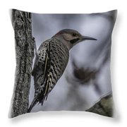 Male - Northern Flicker Throw Pillow