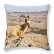 Male Nubian Ibex Capra Ibex Nubiana 1 Throw Pillow