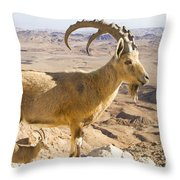 Male Nubian Ibex Capra Ibex Nubiana Throw Pillow