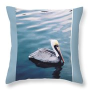 Male Pelican Throw Pillow