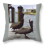 Male Pelicans Throw Pillow