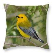 Male Prothonotary Warbler Throw Pillow